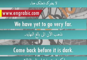 18367الترجمة من اللغة العربية إلى الإنجليزية و العكس.