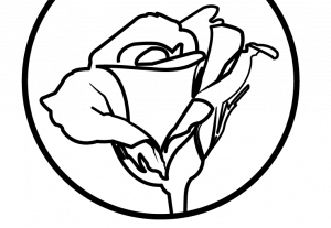 18314سوف اصمم لك لوجو احترافي بالعربي او الانجليزي في اسرع وقت